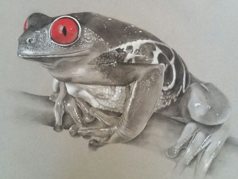 (CreativeWork) Those Red Eyes by Sharyn Talbot. Drawings. Shop online at Bluethumb.