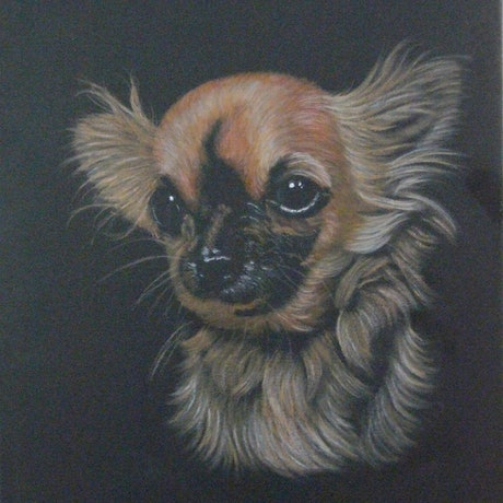 (CreativeWork) General by Beth McCormack. Acrylic Paint. Shop online at Bluethumb.