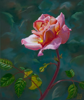 (CreativeWork) A Rose  For Mother by Julie Cane. Oil Paint. Shop online at Bluethumb.