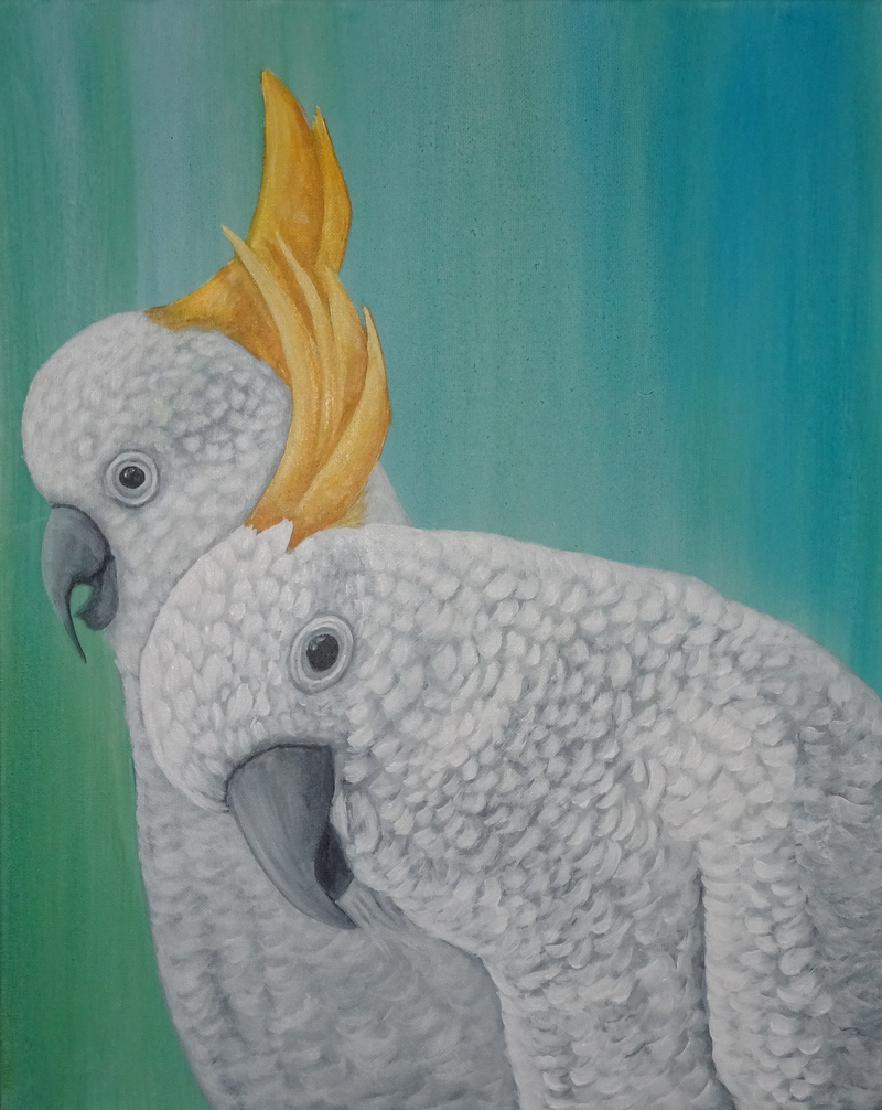 (CreativeWork) Two Cockatoos by Julie-Anne Gatehouse. Acrylic Paint. Shop online at Bluethumb.