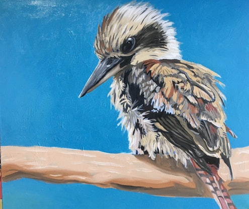 (CreativeWork) Kookaburra by sara bell. Oil Paint. Shop online at Bluethumb.