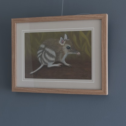 "(CreativeWork) ""Tim Tam"" the Eastern Barred Bandicoot by Nyree Mason. Drawings. Shop online at Bluethumb."