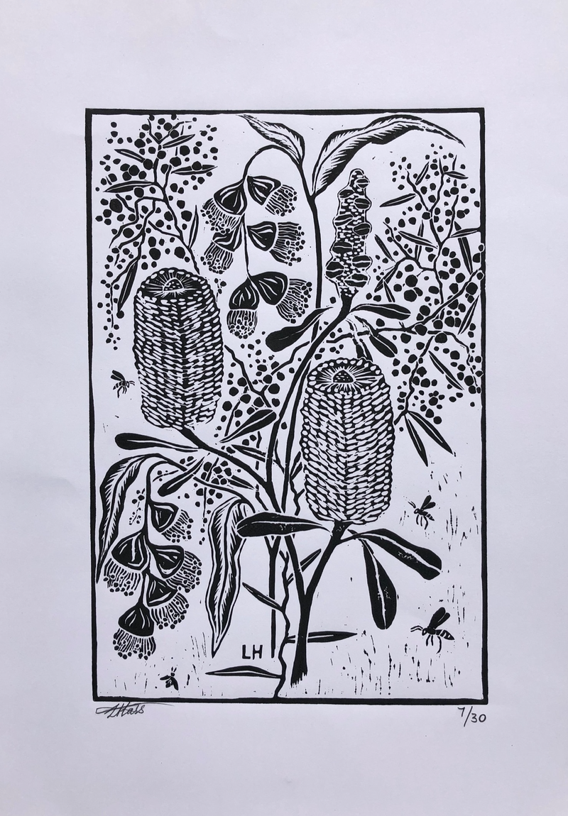 (CreativeWork) Native Flowers  Ed. 7 of 30 by Lily Hass. Print. Shop online at Bluethumb.