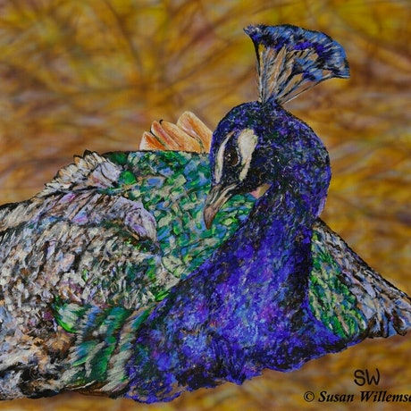 (CreativeWork) Peacock by Susan Willemse. Acrylic Paint. Shop online at Bluethumb.