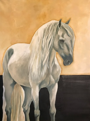 (CreativeWork) Grey Horse II by Antoinette Stokell. Oil Paint. Shop online at Bluethumb.