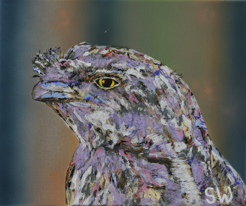 (CreativeWork) Tawny Frogmouth by Susan Willemse. Acrylic Paint. Shop online at Bluethumb.