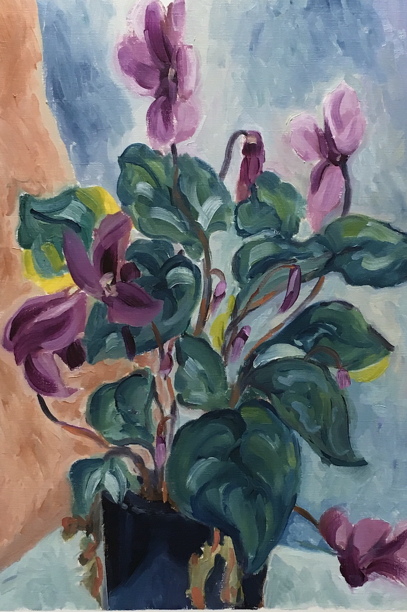 (CreativeWork) cyclamen in pot by Eva Miller. Oil Paint. Shop online at Bluethumb.