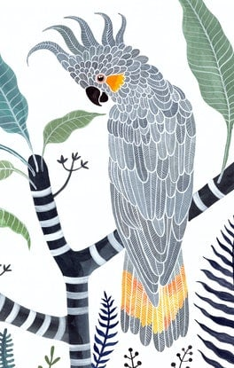 (CreativeWork) Yellow Tailed Grey Cockatoo, Frangipani and Ferns Ed. 36 of 50 by Sally Browne. Print. Shop online at Bluethumb.