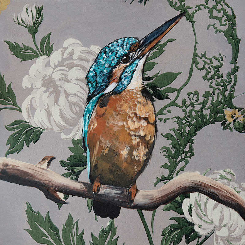 (CreativeWork) Vintage Flora & Fauna Series - Kingfisher Ed. 2 of 50 by HEYLIE MORRIS. Print. Shop online at Bluethumb.