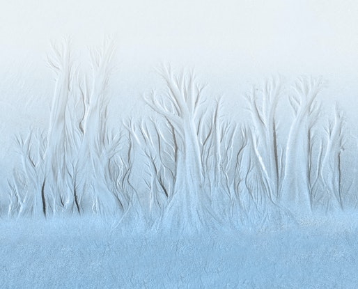 (CreativeWork) Frosty Morning Ed. 1 of 50 by Robert Armitage. Photograph. Shop online at Bluethumb.