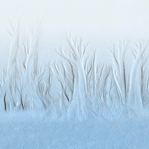 (CreativeWork) Frosty Morning Ed. 1 of 20 by Robert Armitage. photograph. Shop online at Bluethumb.