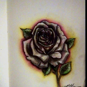 """(CreativeWork) """"Rose Dew Glow"""" (allow 2 days for framing) by K.A. Oakley. drawing. Shop online at Bluethumb."""