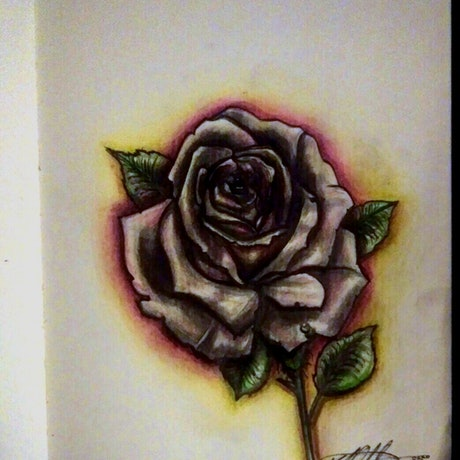 """(CreativeWork) """"Rose Dew Glow"""" (allow 2 days for framing) by K.A. Oakley. Drawings. Shop online at Bluethumb."""