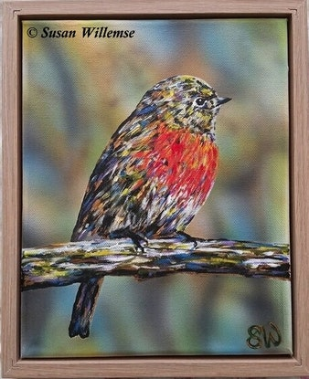 (CreativeWork) Red Robin by Susan Willemse. Acrylic Paint. Shop online at Bluethumb.