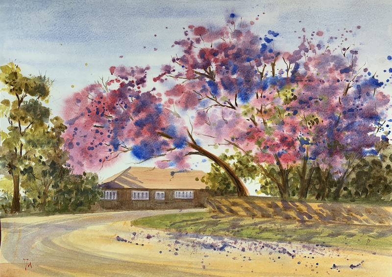 (CreativeWork) Jacaranda in front of the house by Shelly Du. Watercolour Paint. Shop online at Bluethumb.
