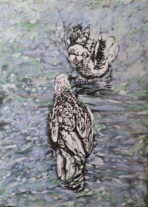 (CreativeWork) Bathing Rosellas by Susan Willemse. Acrylic Paint. Shop online at Bluethumb.