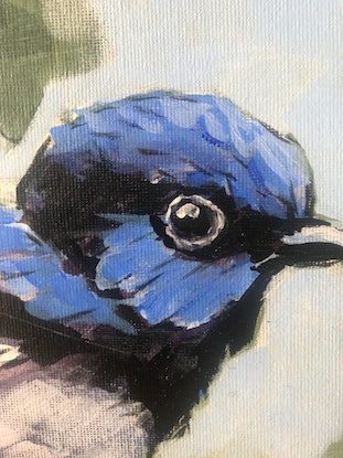 (CreativeWork) Superb Blue Wren, One by Judith Lanigan. Acrylic Paint. Shop online at Bluethumb.