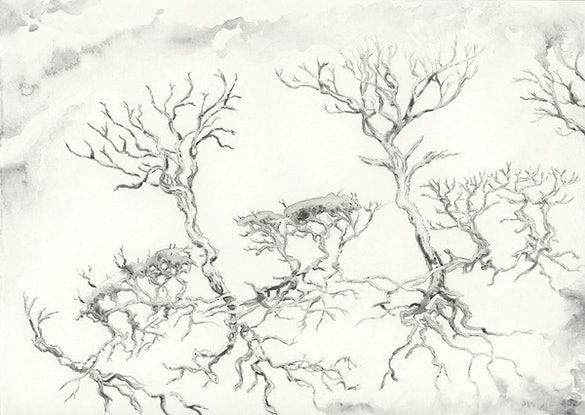 (CreativeWork) Ghost Forest by Lewis Smart. Watercolour Paint. Shop online at Bluethumb.