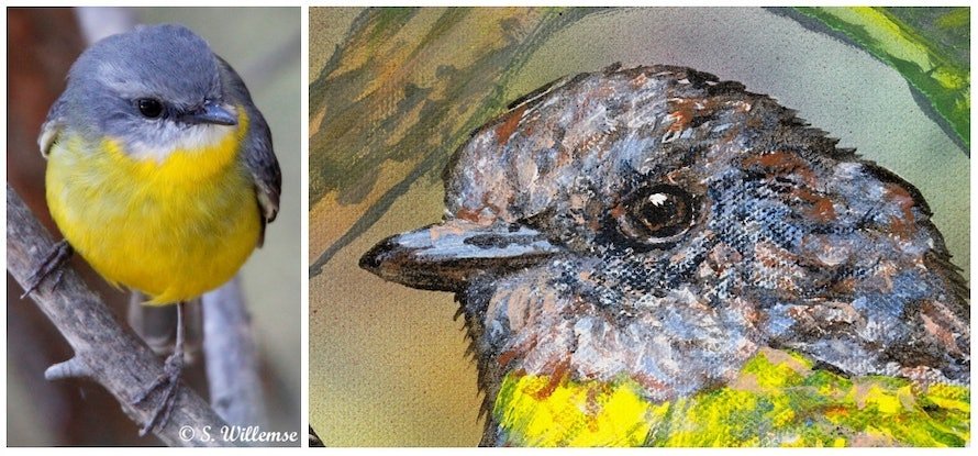 (CreativeWork) Yellow Robins and banksia by Susan Willemse. Acrylic Paint. Shop online at Bluethumb.