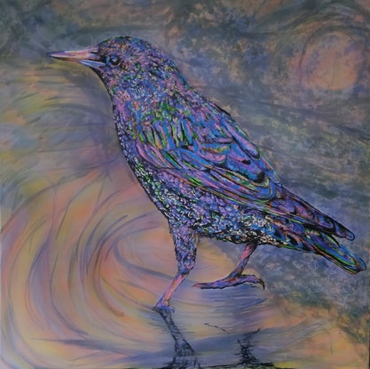 (CreativeWork) Starling by Susan Willemse. Acrylic Paint. Shop online at Bluethumb.