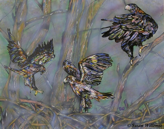 (CreativeWork) Wedge-tailed Eagles: Learning to fly by Susan Willemse. Acrylic Paint. Shop online at Bluethumb.