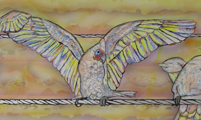 (CreativeWork) Sunset Corellas by Susan Willemse. Acrylic Paint. Shop online at Bluethumb.
