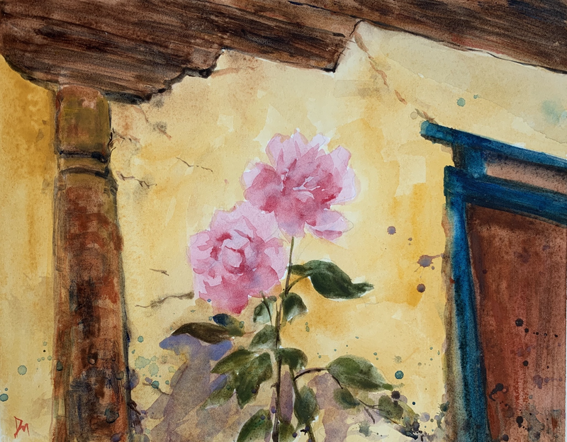(CreativeWork) Pink roses, yellow old wall by Shelly Du. Watercolour Paint. Shop online at Bluethumb.