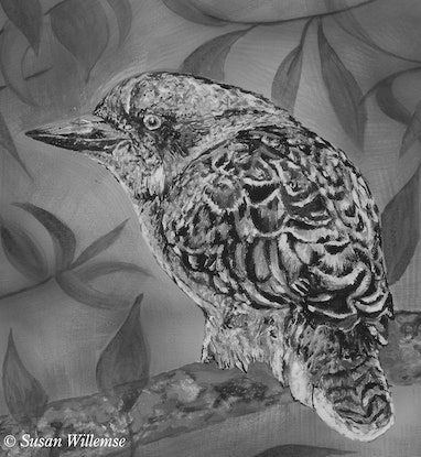 (CreativeWork) Grumpy Kookaburra by Susan Willemse. Acrylic Paint. Shop online at Bluethumb.