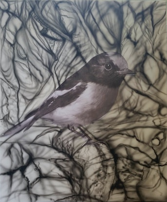 (CreativeWork) Red-capped Robin by Susan Willemse. Acrylic Paint. Shop online at Bluethumb.