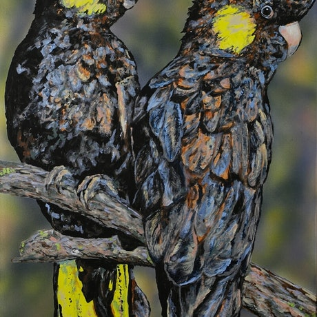 (CreativeWork) The Girls: Black Cockatoos by Susan Willemse. Acrylic Paint. Shop online at Bluethumb.