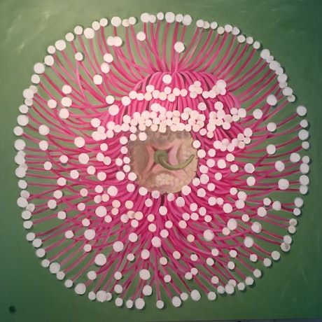 (CreativeWork) Starburst by Roby Callaghan. Acrylic Paint. Shop online at Bluethumb.
