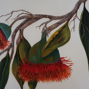(CreativeWork) Australian  Gum Flower - It's All About You by Maria Cross. acrylic-painting. Shop online at Bluethumb.