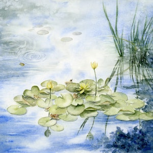 (CreativeWork) Waterlily pond by Cecilia Xiao. watercolour. Shop online at Bluethumb.