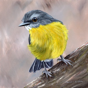 (CreativeWork) Eastern Yellow Robin by Janet Graham. #<Filter:0x00007fef2de7bcf0>. Shop online at Bluethumb.
