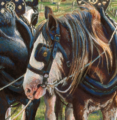 (CreativeWork) WHAT'S GOING ON ? by Ron and Jennifer Marshall. Drawings. Shop online at Bluethumb.