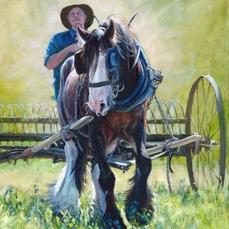 (CreativeWork) SERGEANT RAKING LUCERNE - 3/25 Ed. 3 of 25 by Ron and Jennifer Marshall. Print. Shop online at Bluethumb.