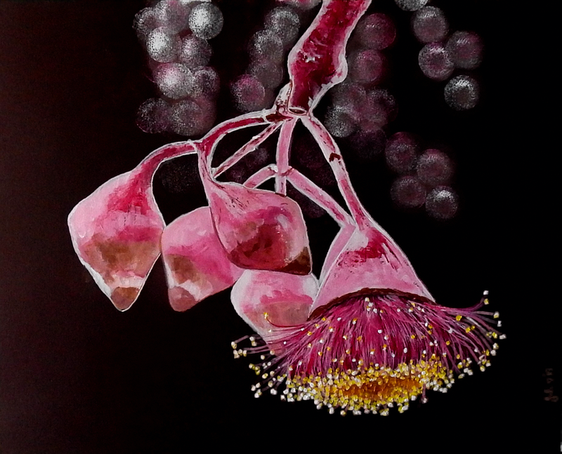 (CreativeWork) Beauty in a Gumnut Pod by julie hollis. Acrylic Paint. Shop online at Bluethumb.