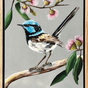 (CreativeWork) Fairy Wren by HEYLIE MORRIS. arcylic-painting. Shop online at Bluethumb.