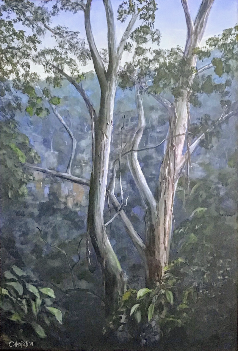 (CreativeWork) Illawarra Rainforest Clover Hill Road by Colin Hadfield. Acrylic Paint. Shop online at Bluethumb.