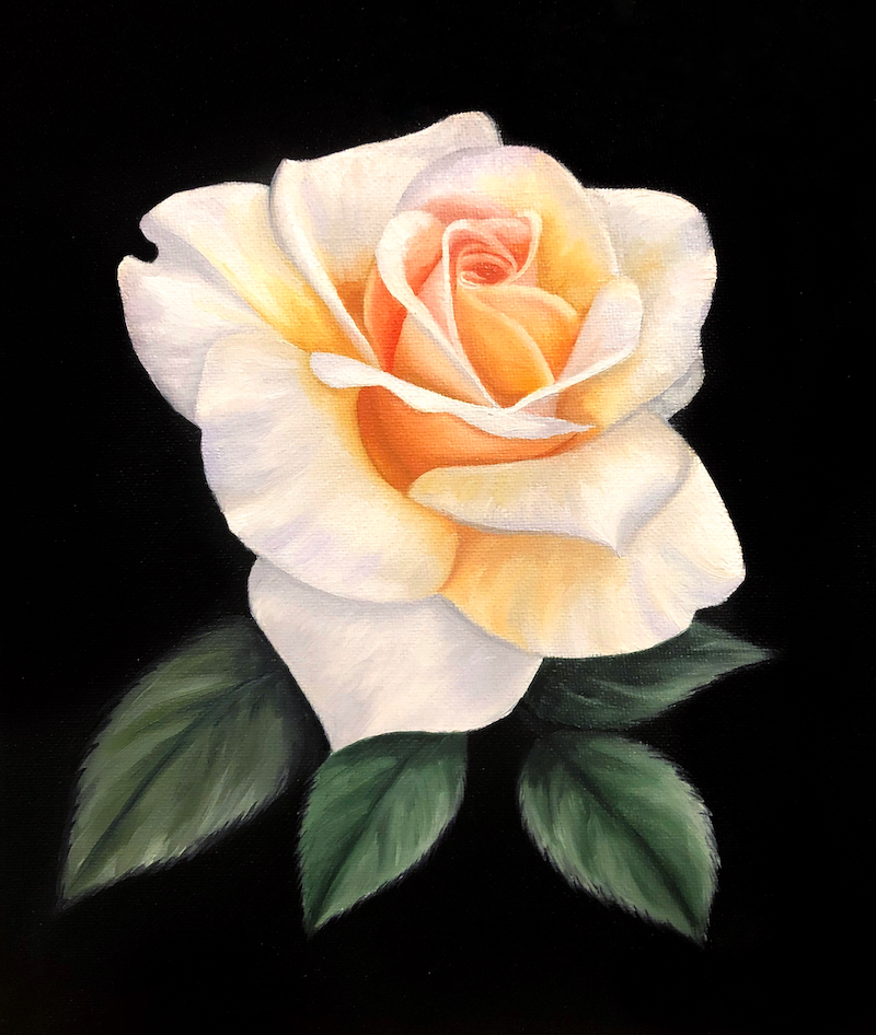(CreativeWork) Peach Rose by Ashley Bunting. oil-painting. Shop online at Bluethumb.