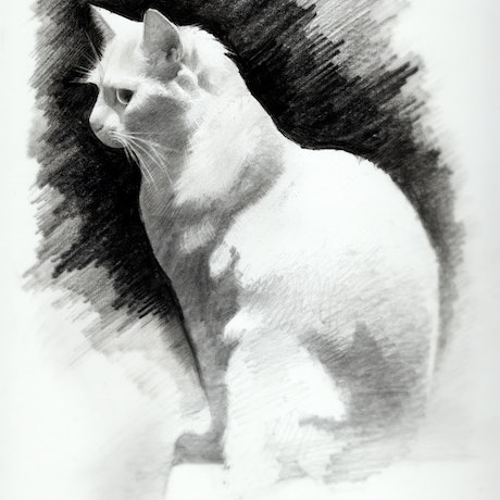 (CreativeWork) Comet by Doug Norfolk. Drawings. Shop online at Bluethumb.