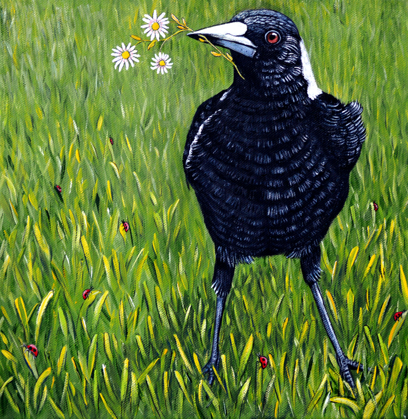 (CreativeWork) Magpie - Flowers for You by Linda Callaghan. Acrylic Paint. Shop online at Bluethumb.