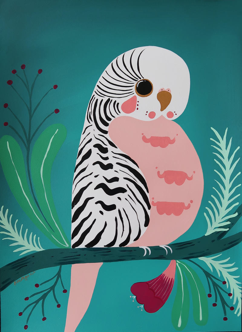 (CreativeWork) Pretty Little Budgie by emma whitelaw. arcylic-painting. Shop online at Bluethumb.