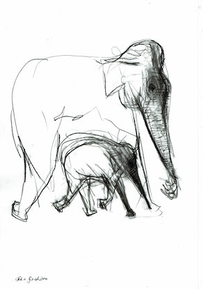 (CreativeWork) Elephant and baby  by John Graham. Drawings. Shop online at Bluethumb.