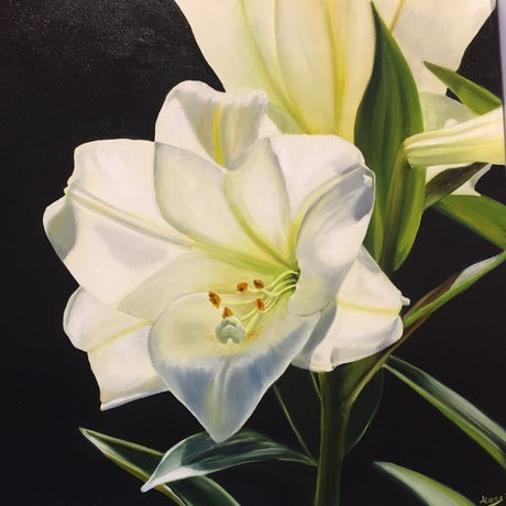 (CreativeWork) Christmas Lily 1 by Anne Lucas. Oil Paint. Shop online at Bluethumb.