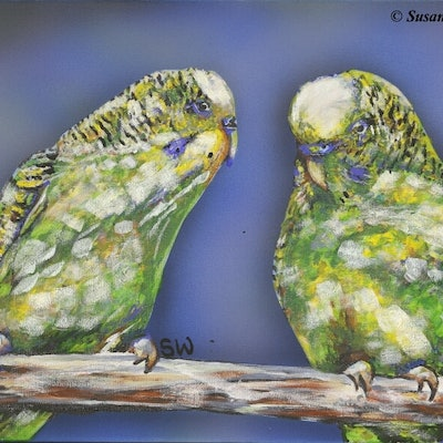 (CreativeWork) Budgie Love by Susan Willemse. acrylic-painting. Shop online at Bluethumb.