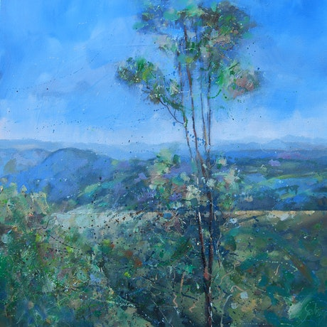 (CreativeWork) Witches Falls.Tamborine Mountain by Trevor Salisbury. Oil Paint. Shop online at Bluethumb.