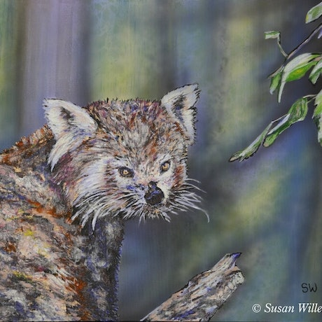 (CreativeWork) Red Panda by Susan Willemse. Acrylic Paint. Shop online at Bluethumb.