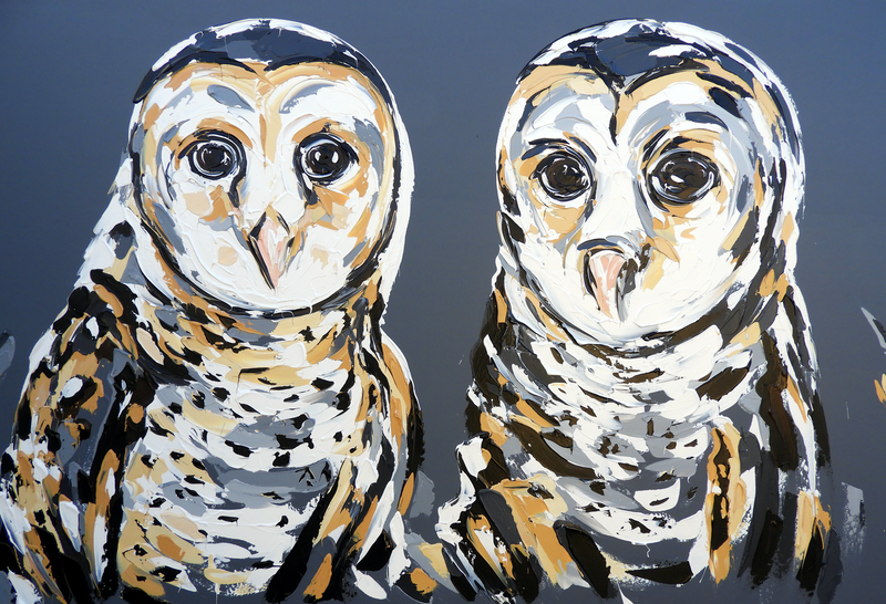 (CreativeWork) Masked Owl - Reserved Commission  by Lisa Fahey. arcylic-painting. Shop online at Bluethumb.