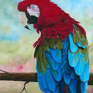 (CreativeWork) Sticky Beak - Limited Edition Giclee Print  Ed. 2 of 100 by Debra Dickson. print. Shop online at Bluethumb.